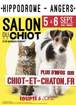 Salon du chiot - Angers (extérieur)