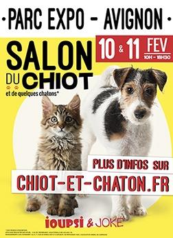 Salon du chiot - Avignon